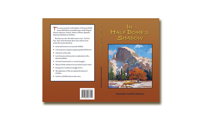 Fiction Book Cover – In Halfdome's Shadow