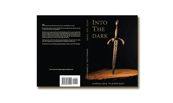 Fiction Book Cover – Into The Dark
